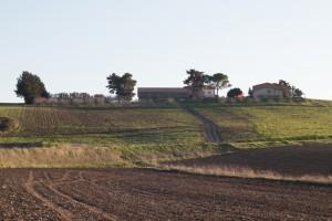 foto azienda agricola-72