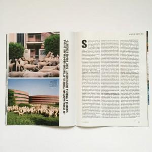 "magazin ""D"" 1"